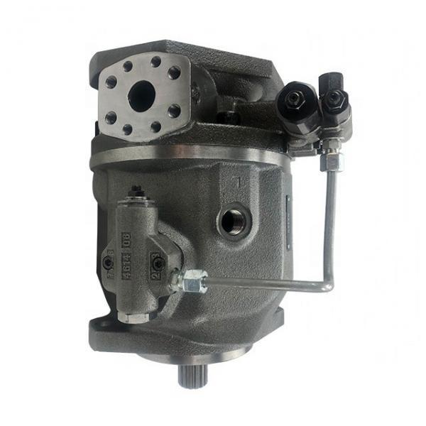 REXROTH A10VSO100DFE1/31R-PPA12K02 A10VSO100 pompe à piston #1 image